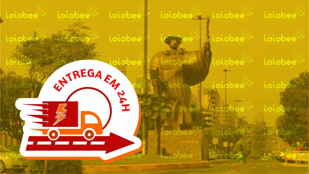 Frete Grátis em Chapecó SC entrega em 24 horas